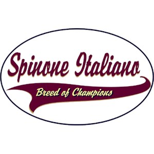 Spinone Italiano T-Shirt - Breed of Champions