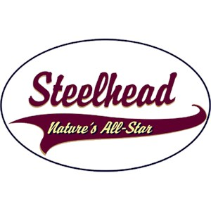Steelhead T-Shirt - Breed of Champions