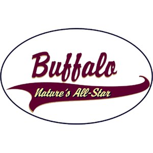 Buffalo T-Shirt - Breed of Champions