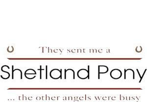 Shetland Pony T-Shirt - Other Angels