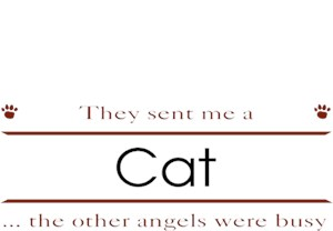Cat T-Shirt - Other Angels