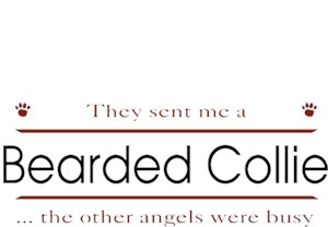 Bearded Collie T-Shirt - Other Angels