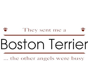 Boston Terrier T-Shirt - Other Angels