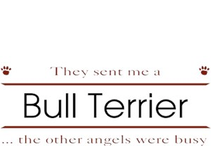Bull Terrier T-Shirt - Other Angels