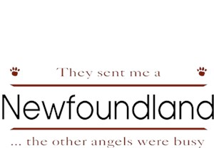 Newfoundland T-Shirt - Other Angels