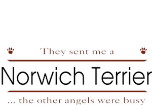Norwich Terrier T-Shirt - Other Angels