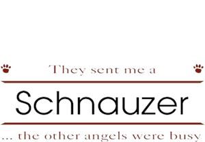 Schnauzer T-Shirt - Other Angels