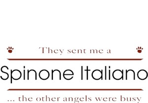Spinone Italiano T-Shirt - Other Angels