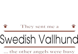 Swedish Vallhund T-Shirt - Other Angels