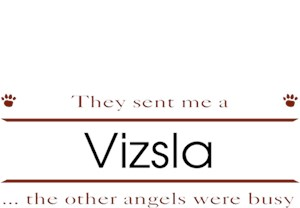 Vizsla T-Shirt - Other Angels