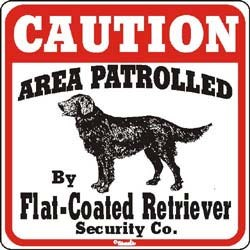 Flat-Coated Retriever Caution Sign