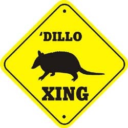Armadillo Crossing