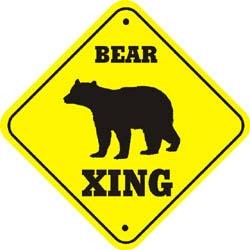 Brown Bear Crossing