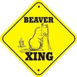 Beaver Crossing