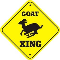 Goat Crossing