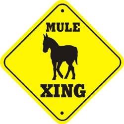 Mule Crossing