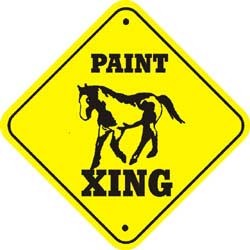 Paint Horse Crossing