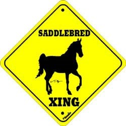 Saddlebred Horse Crossing