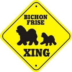 Bichon Frise Crossing