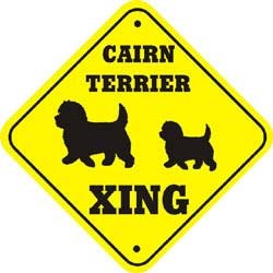 Cairn Terrier Crossing