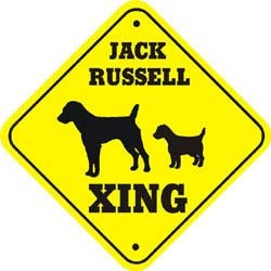 Jack Russell Terrier Crossing