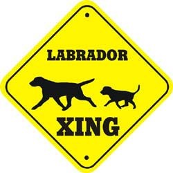 Labrador Crossing Xing