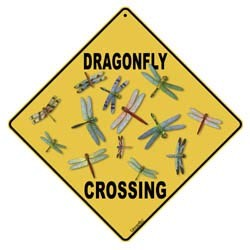 Dragonfly Sign