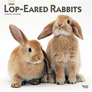 Lop-Eared Rabbits Calendar 2015