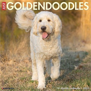 Goldendoodles Calendar 2015