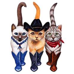 Cat T-Shirt - Cowboy Boots