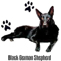 Black German Shepherd T-Shirt - Stylin With Paws