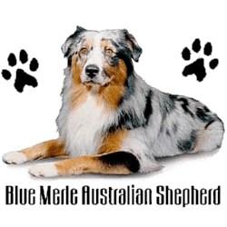 Blue Merle Australian Shepherd T-Shirt - Stylin With Paws