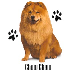 Chow Chow T-Shirt - Stylin With Paws