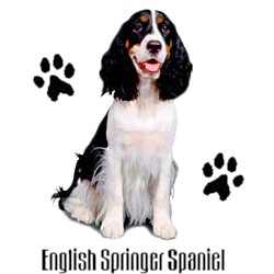 English Springer Spaniel T-Shirt - Stylin With Paws