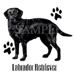 Black Lab T-Shirt - Stylin With Paws