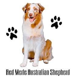 Red Merle Australian Shepherd T-Shirt - Stylin With Paws