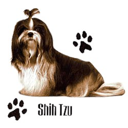 Shih Tzu T-Shirt - Stylin With Paws