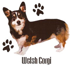 Welsh Corgi T-Shirt - Stylin With Paws