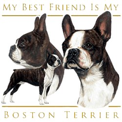 Boston Terrier T-Shirt - My Best Friend Is