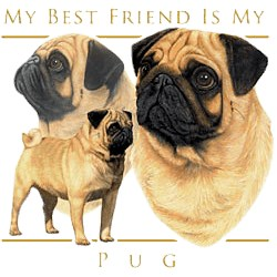 Pug T-Shirt - My Best Friend Is