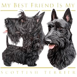 Scottish Terrier T-Shirt - My Best Friend Is