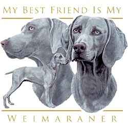Weimaraner T-Shirt - My Best Friend Is