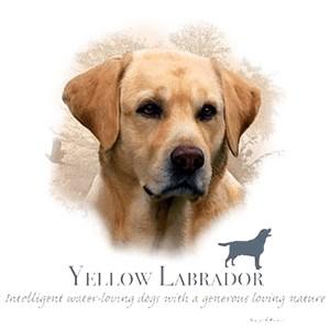 Yellow Lab T-Shirt - My Best Friend