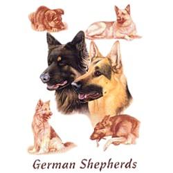 German Shepherd T-Shirt - Eye Catching