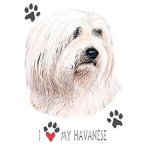 Havanese T-Shirt - I Heart My