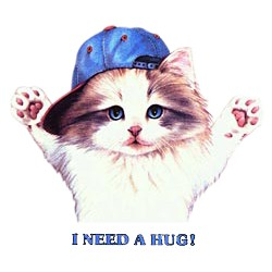 Cat T-Shirt - I Need A Hug