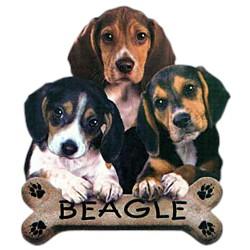 Beagle T-Shirt - Trio of Three