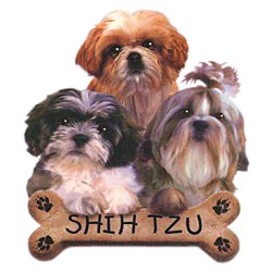 Shih Tzu T-Shirt - Trio of Three