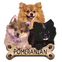 Pomeranian T-Shirt - Trio of Three