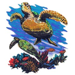Sea Turtle T-Shirt - Carefree